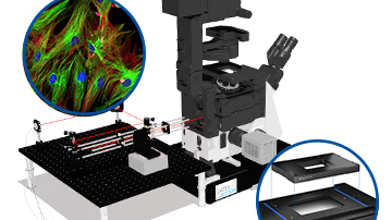Total Internal Reflection Fluorescence Microscopy